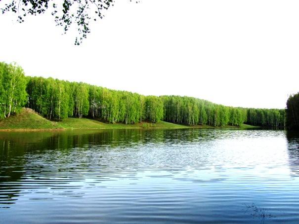 павловский район рыбалка
